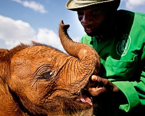 Religious Leader Safari, Nairobi, Kenya